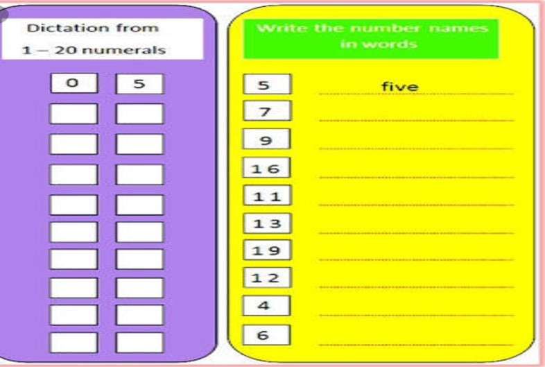 Maths class Number name and number sense