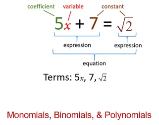 Maths class 8 Algebraic expression and identities