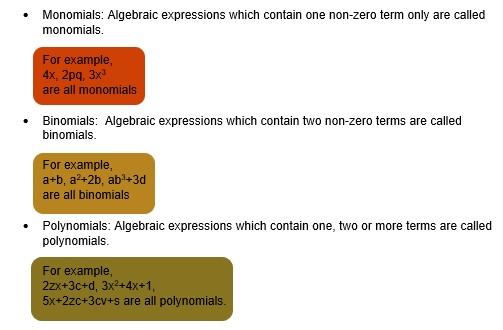 Class 8 Algebraic Expressions Identities Basics Problems And