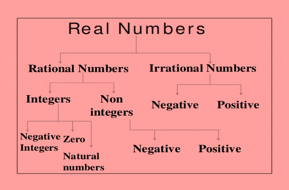 Maths class 10 Real Numbers