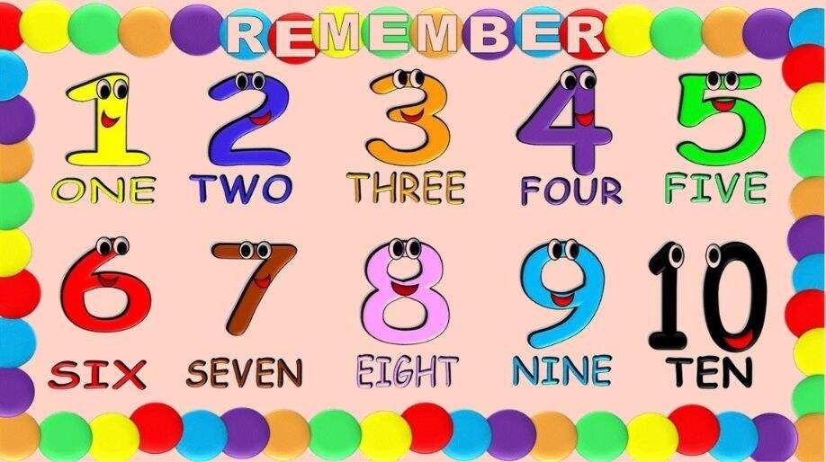 Number Name and Sense