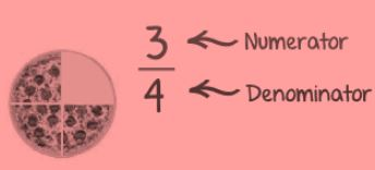 Definition of Numerator