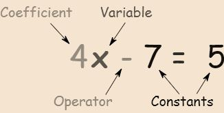 Definition of Operator